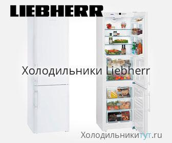 Холодильники Либхер (каталог и цена)